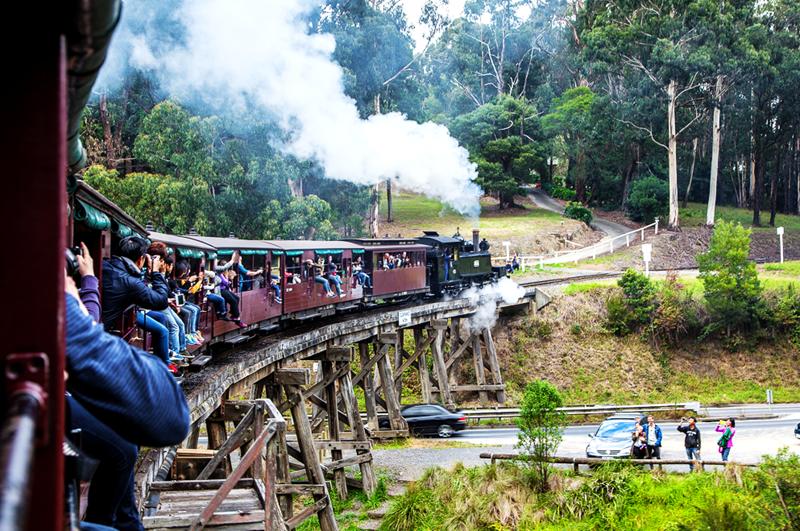 叮里咣当,在澳洲乘坐普芬比利蒸汽小火车