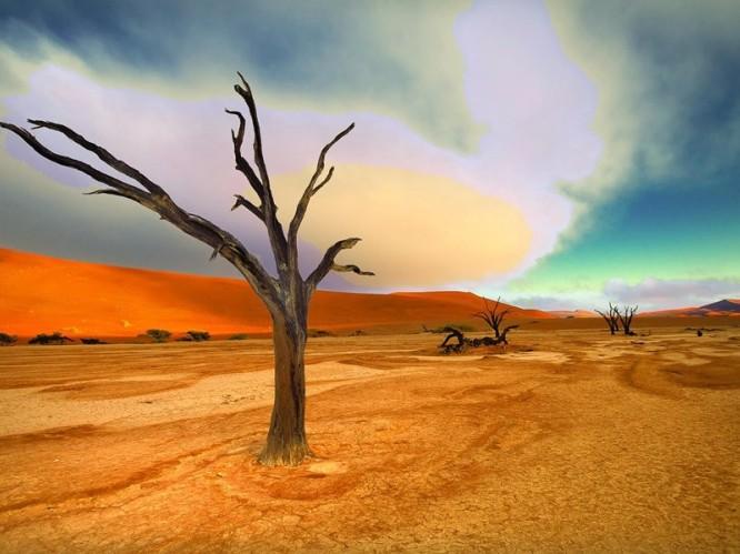 惊艳纳米比亚自驾之旅
