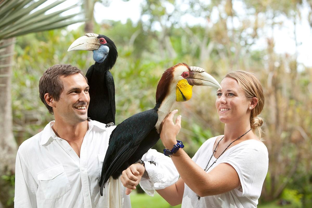 巴厘岛鸟园门票