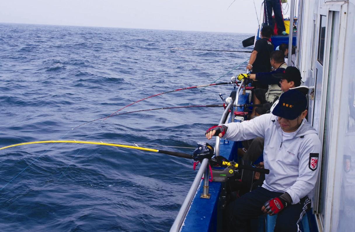 冰岛观鲸和深海垂钓