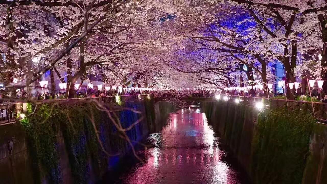 大阪一日游全攻略