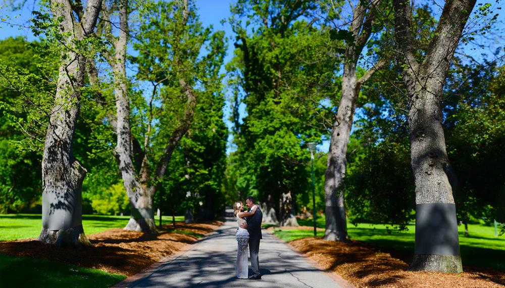 漫步在花园之州墨尔本